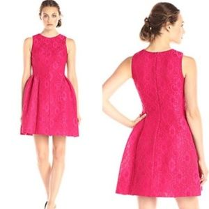Calvin Klein Lace Fit and Flare Dress